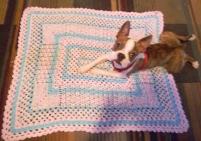 Rectangular Sampler Blanket ss9904