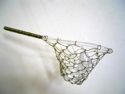 Glass Fish and Fishing Net by Bending Flow Designs