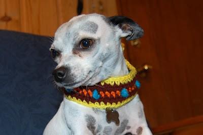 Retro Collar, free crochet pattern by Sara Sach. Image (c) Posh Pooch Designs.